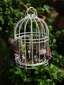 this is not a bird cage